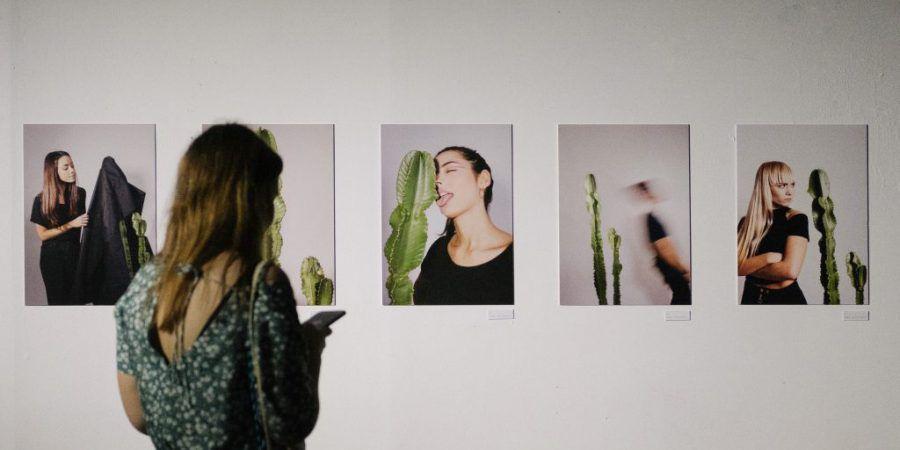 Anjos70, em Lisboa, tem uma exposição sobre os sentimentos de um cacto