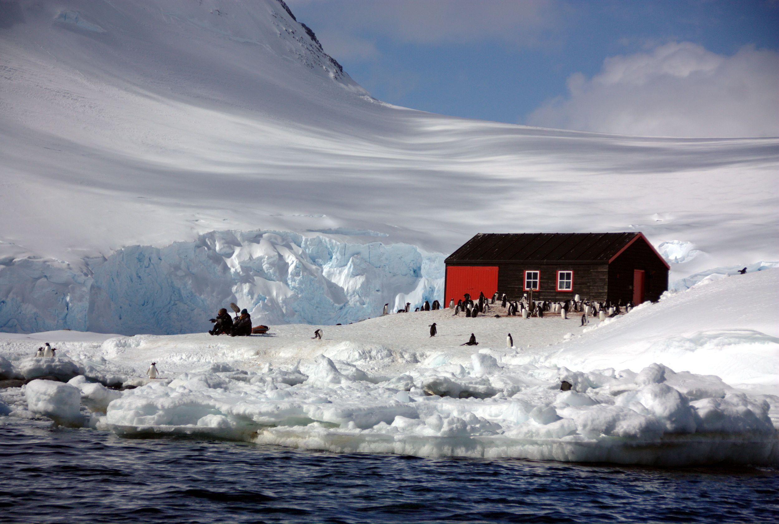 Vinte e sete cientistas reúnem-se em Coimbra para debater o efeito das alterações climáticas na vida da Antártida