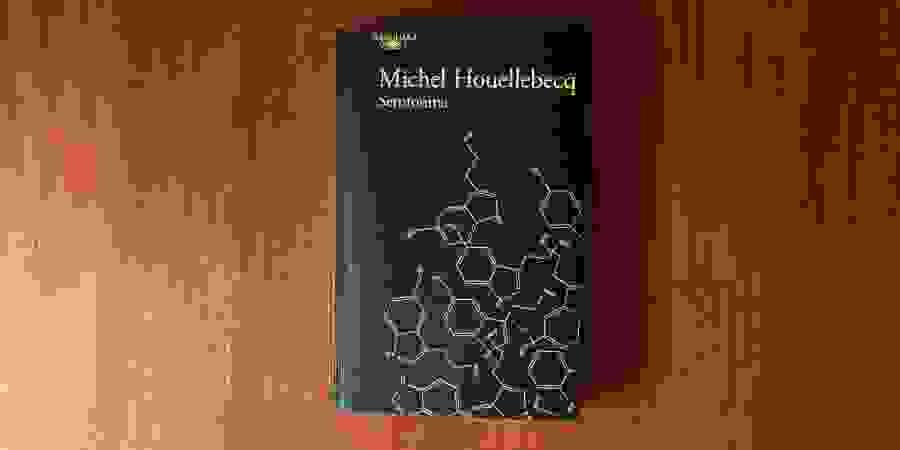 """Serotonina"": irá Michel Houellebecq alguma vez sair da crise da meia-idade?"