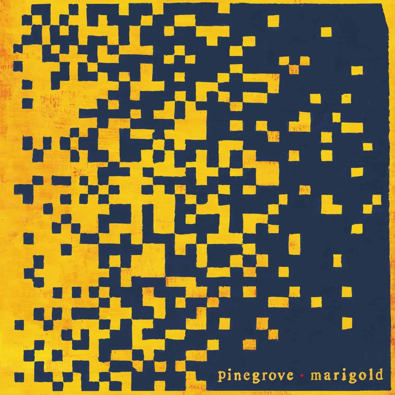 """""""Marigold"""": no trilho da humanidade dos Pinegrove"""