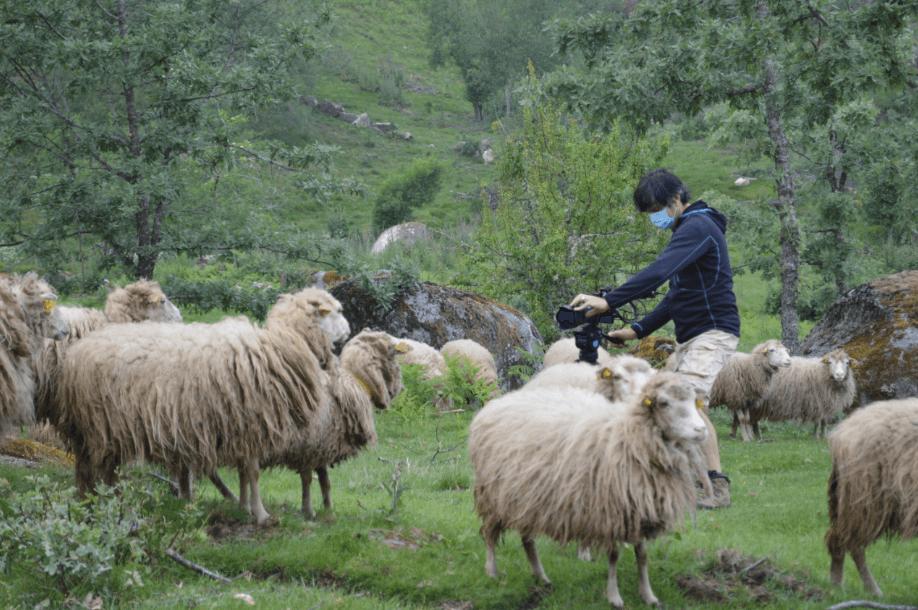 """""""Rewilding, um novo caminho para a natureza em Portugal"""": atrás das câmaras"""