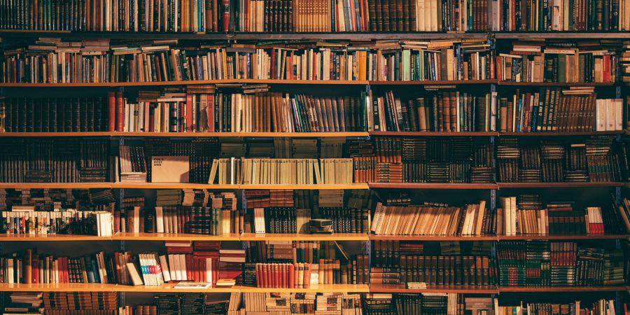 Grupo Porto Editora alivia pressão das tesourarias das livrarias independentes como forma de apoio ao sector