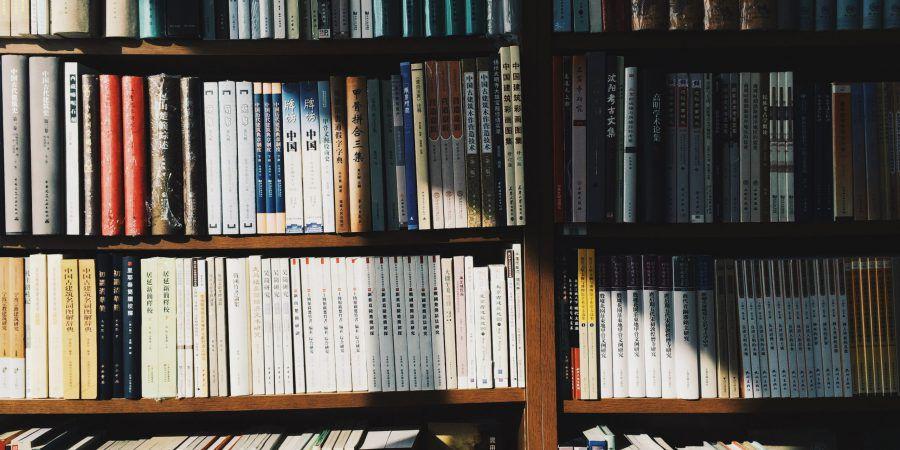 """Chega às livrarias """"Mulheres na História do Mundo"""", um livro que procura repor o real lugar das mulheres na história"""