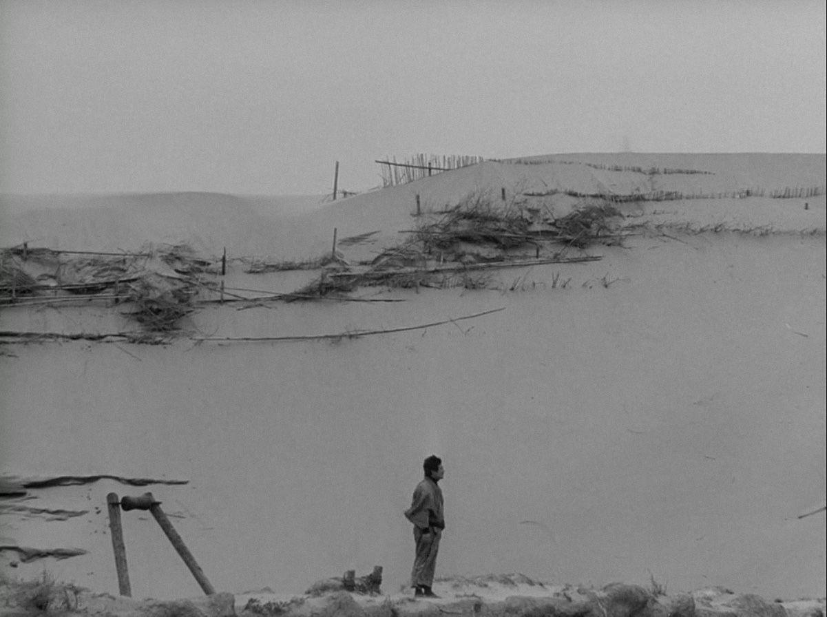 "#40 Essenciais do Cinema. ""Woman in the Dunes"", de Hiroshi Teshigahara"