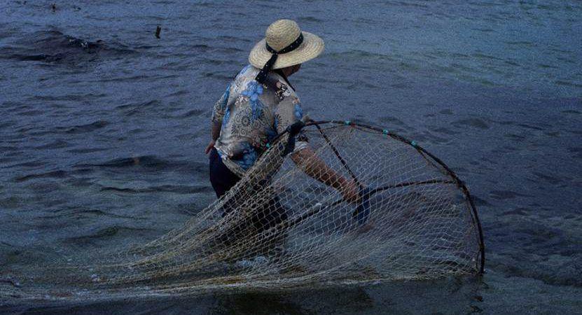 """RTP2 exibe documentário """"A Mãe e o Mar"""", um filme sobre as mulheres pescadoras da praia de Vila Chã"""