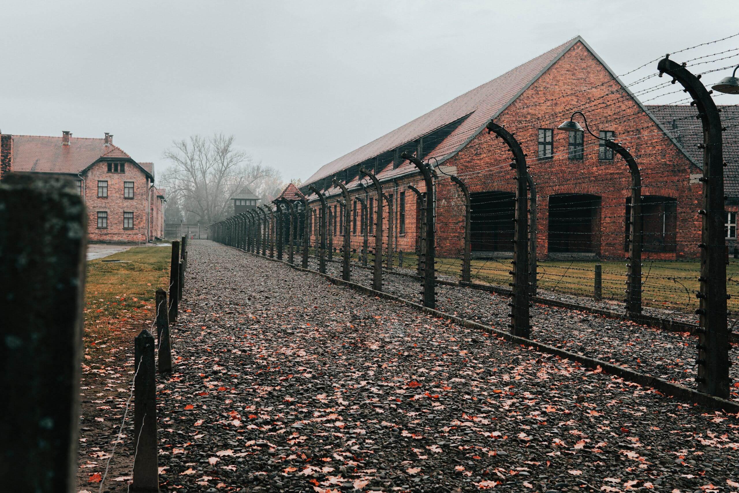 Ana Galán vence prémio Europa Nostra com exposição sobre Auschwitz. Investigadora dedica-se à conservação do património trágico