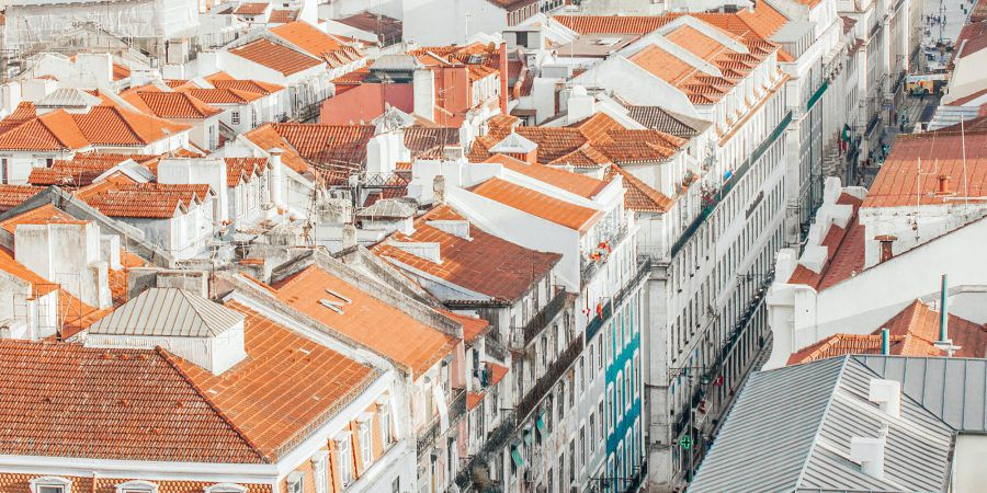 Debate. Como criar uma Lisboa mais verde e com mais justiça ambiental urbana