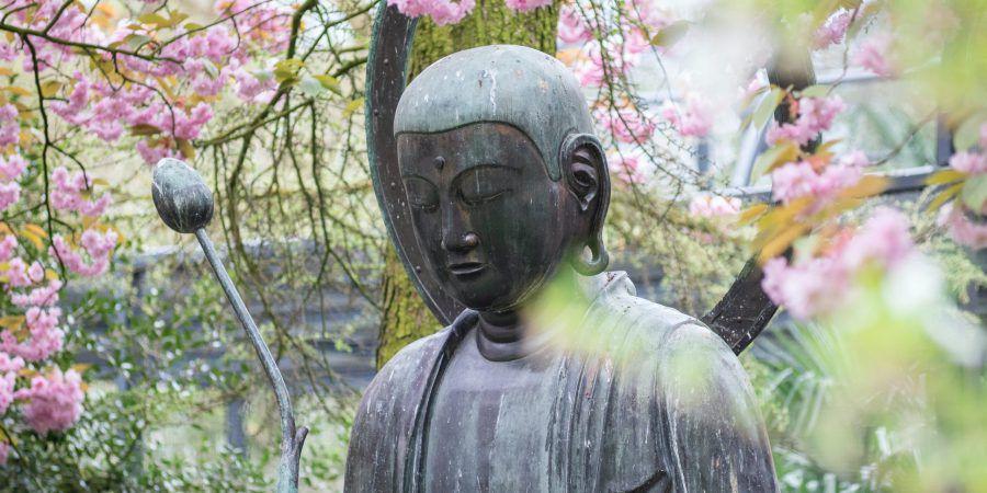 O pensamento da economia budista