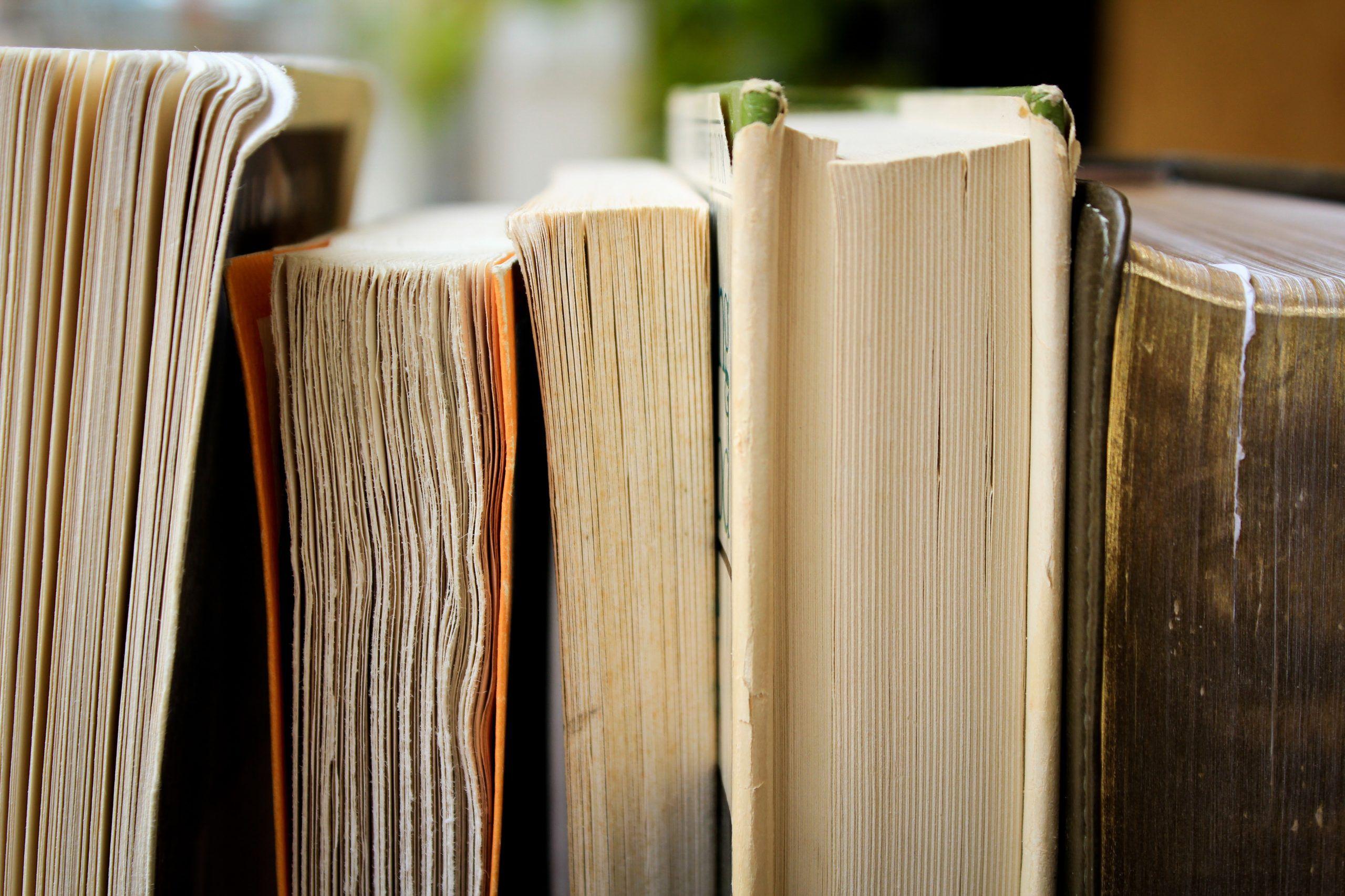 Antígona e Orfeu Negro juntam-se novamente para apoiar 20 livrarias independentes