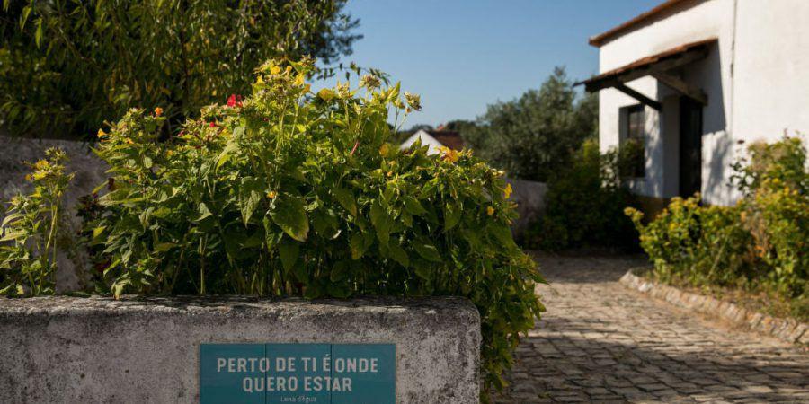 """""""Cem Soldos Habita a Rua"""" com programação online e actividades para habitantes da aldeia"""