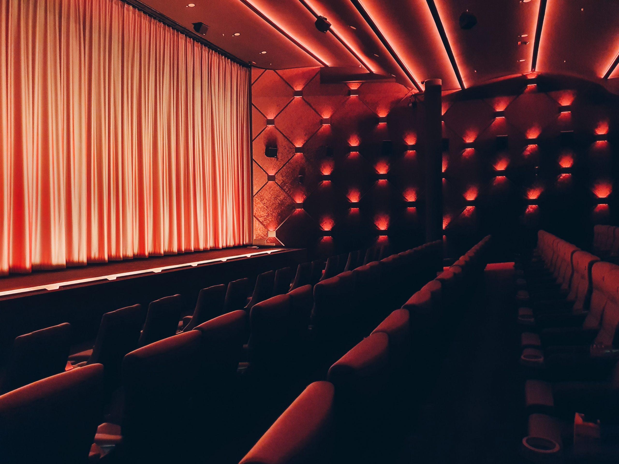 Academia Portuguesa de Cinema e Netflix estabelecem parceria para promover o trabalho de mulheres cineastas