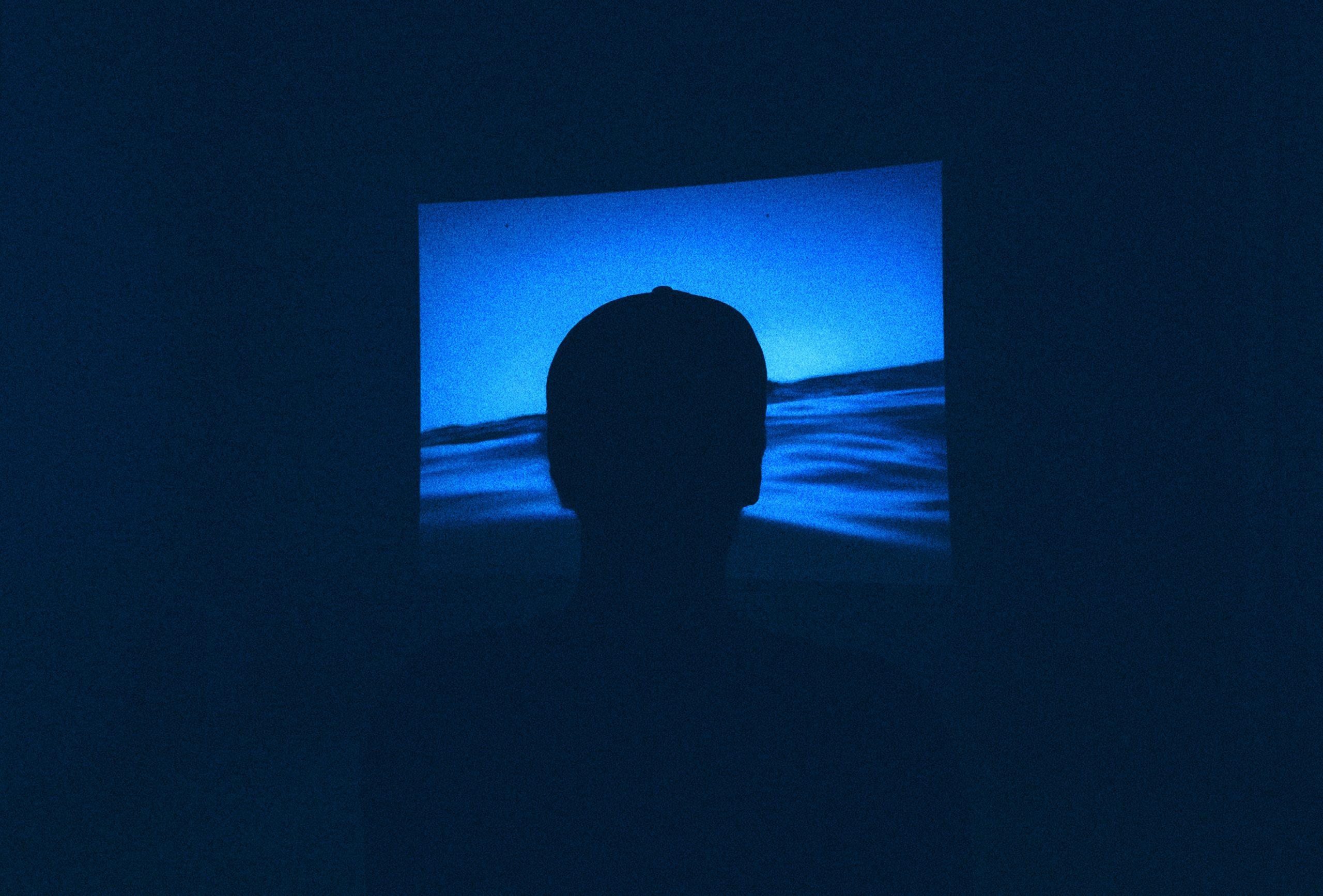 CineEco. Festival Internacional de Cinema Ambiental de Seia anuncia novidades